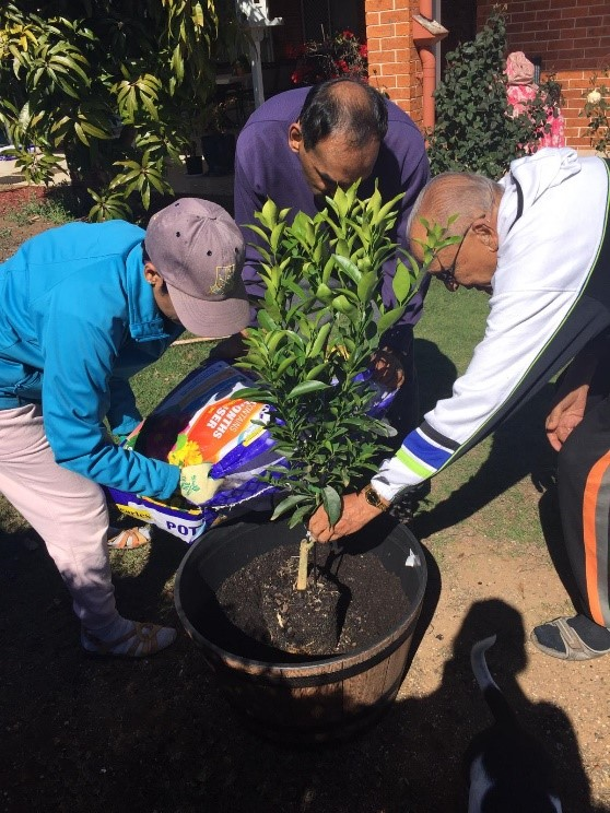 Envirocare – National Tree Day
